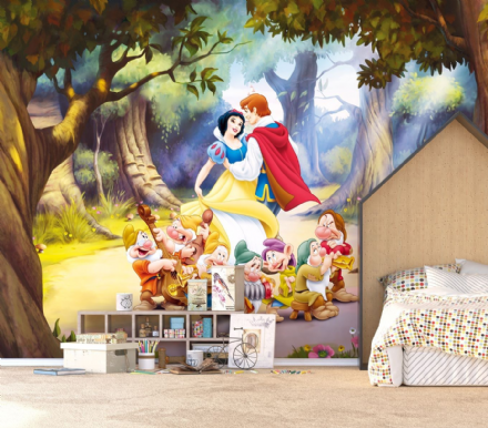 Disney Premium wall mural Princess
